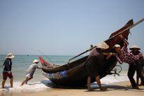 Bộ NN&PTNT: Ngư dân miền Trung được phép khai thác hải sản bình thường