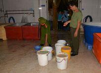 Kỳ lạ thùng niêm phong tôm tiêm tạp chất, trở thành 'sạch' sau 1 đêm