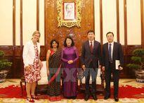 UNDP sẽ cung cấp hỗ trợ mang tính chất giá trị gia tăng cho Việt Nam
