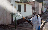 Lo virus Zika, nhiều nước ra cảnh báo du lịch Singapore
