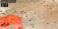 Quân đội Syria giành lại kho hạt giống ở Palmyra