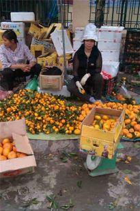 Bàn tay biến dạng như lửa đốt vì nhiều năm buôn bán hoa quả Trung Quốc
