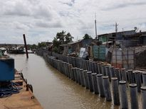 Sự cố sạt lở tuyến kè bảo vệ ở Cà Mau: Nhà thầu nói gì?