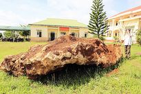 Tảng đá lạ 20 tấn bị tạm giữ do nghi là khoáng sản quý