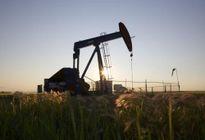 EIU lạc quan về thỏa thuận 'đóng băng' sản lượng khai thác dầu giữa Nga và OPEC