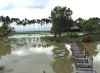 Vườn cau- Điểm du lịch độc đáo ở Đức Linh (Bình Thuận)