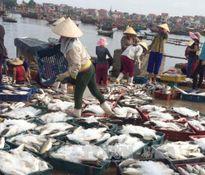 Cá chết ở Nghi Sơn không ảnh hưởng mua bán, khai thác hải sản
