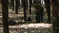 Thảm án ở Đắk Nông: Hai cha con tử vong trong rừng