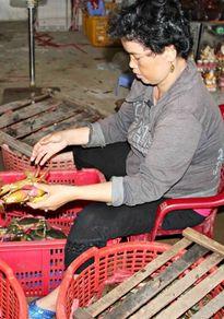 Trung Quốc giảm mua, người nuôi lẫn các vựa thu cua biển Cà Mau phải điêu đứng
