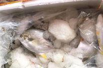 Bắt giữ gần 1,7 tấn thủy hải sản đông lạnh nhập lậu