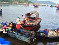Thành lập Tổ kiểm tra, giám sát môi trường tại Khu kinh tế Nghi Sơn-Thanh Hóa