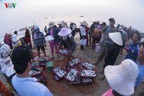 Người tiêu dùng vẫn dè dặt với hải sản biển Quảng Trị