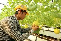 Thanh Hóa: Phát triển kinh tế – xã hội dựa trên nền tảng ứng dụng Khoa học & Công nghệ