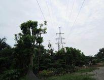 Bảo vệ an toàn lưới điện cao áp – Bài 3: Giải bất cập trong chính sách bồi thường GPMB