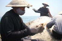 Ứng trước tiền bồi thường cho người dân 4 tỉnh miền Trung