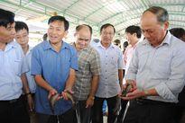 Kết nối chặt giữa Hà Nội và các tỉnh đưa nông sản, thực phẩm vào TP