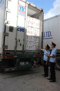 Lạng Sơn: 4 doanh nghiệp vi phạm chậm nộp kết quả chuyên ngành