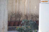 Chậu hoa vỡ nhếch nhác trong hầm chui tiền tỉ ở Hà Nội