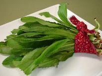Tiết lộ 3 bài thuốc đẩy sỏi thận ra ngoài cơ thể từ rau thơm hiệu quả