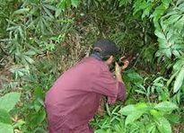 Nhắm bắn thú rừng, trúng người đi bắt dúi