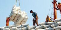 Gạo Việt loay hoay tìm lại thương hiệu