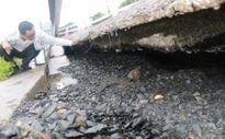 Đường mòn Hồ Chí Minh đoạn qua thôn 13, xã Đắk Gằn huyện Đắk Mil, tỉnh Đắk Nông bị sụt lún trầm trọng