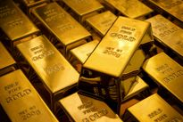 Ngày 20/10: Giá vàng SJC và tỷ giá USD cùng giữ mức ổn định
