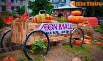 Giới trẻ Sài thành phấn khích với vườn bí ngô 'khủng' đón Halloween