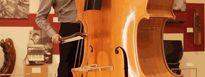Octobasse - 'cây viola phóng to' trong dàn nhạc có âm thanh như thế nào?