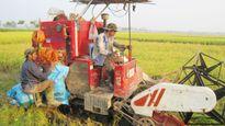 Cơ giới hóa nông nghiệp: Bao giờ hết phụ thuộc?