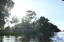 Nao lòng khám phá Tràm Chim Đồng Tháp mùa nước nổi
