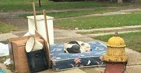 Bị chủ bỏ rơi, chú chó đáng thương kiên nhẫn chờ bên đống đồ cũ