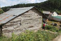 Lâm Đồng: Người đàn ông chết trong tư thế treo cổ