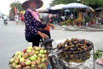 Hoa quả Trung Quốc 'khoác áo' hàng Việt