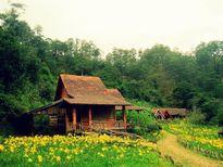 Ngôi làng tuyệt đẹp có cái tên kì dị ở chân đỉnh LangBiang
