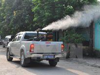 Hà Nội cần chủ động phòng chống dịch bệnh do virus Zika