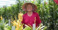 'Trùm' hoa lan tuổi 70 ở đất thép Củ Chi