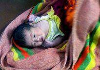 Bé gái sơ sinh 3 kg bị bỏ rơi trong vườn cao su