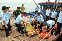 Hải quan Quảng Ninh: Những dấu ấn Kiểm soát