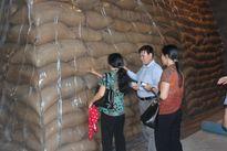 Hỗ trợ khẩn cấp 1.500 tấn gạo cứu đói