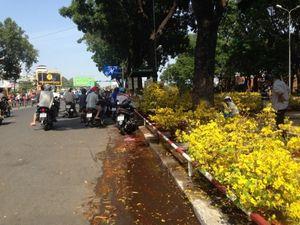 Dân đổ xô đi mua hoa giá rẻ chiều cuối năm