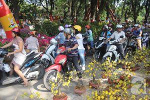 29 Tết, người Sài Gòn tấp nập đi mua hoa giảm giá 80%