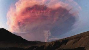 Sự thật khiến bạn ngã ngửa: Trái đất là một nơi thực sự đáng sợ