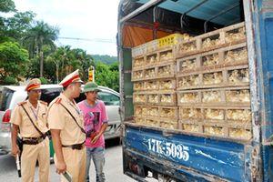 Chống buôn lậu là nhiệm vụ chính trị quan trọng của ngành Giao thông