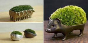 Độc lạ phát minh tuyệt vời cho thực vật nhỏ xinh