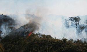 Đám cháy tại Vườn Quốc gia Hoàng Liên đã được khống chế thành công.