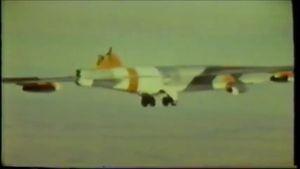Máy bay chiến đấu Mỹ rụng đuôi, gãy cánh... vẫn tiếp đất an toàn