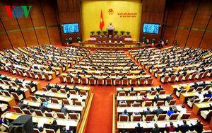 Lựa chọn những đại biểu ưu tú vào cơ quan dân cử