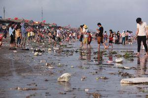 Biển không rác