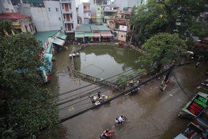 Nhộn nhịp bắt cá trên phố Mễ Trì sau mưa